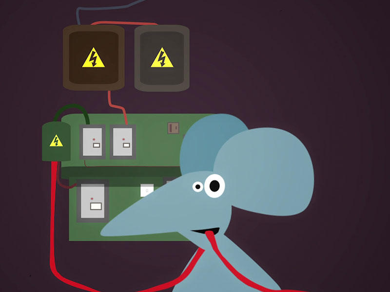 Still from animated short film Nom Nom Nom — a mouse chews an electric cable by a fusebox